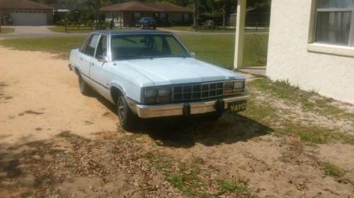 1982 Leesburg FL